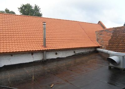 Renovatie dak in Terreal dakpannen - na de werken